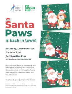 2019 Santa Paws @ Pet Supplies Plus | Quincy | Massachusetts | United States