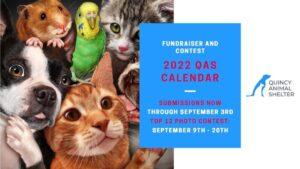 2022 Quincy Animal Shelter Calendar Contest!